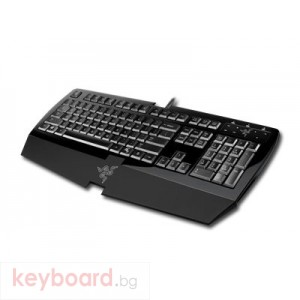 Клавиатура RAZER Arctosa USB